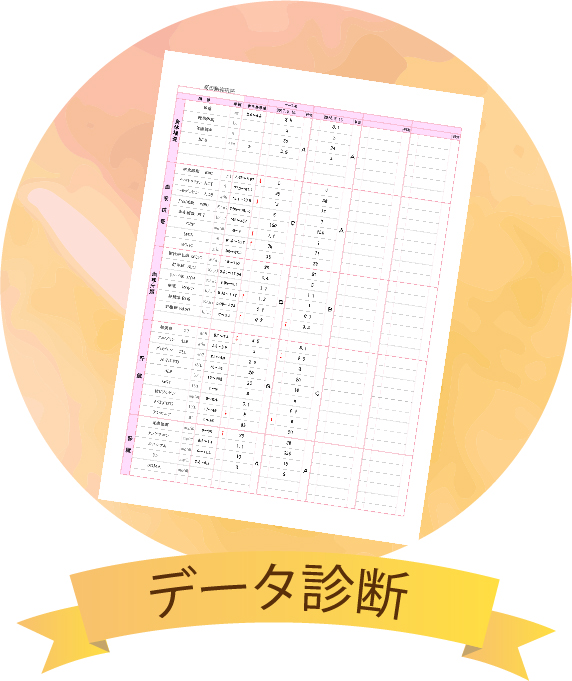 データ診断の用紙